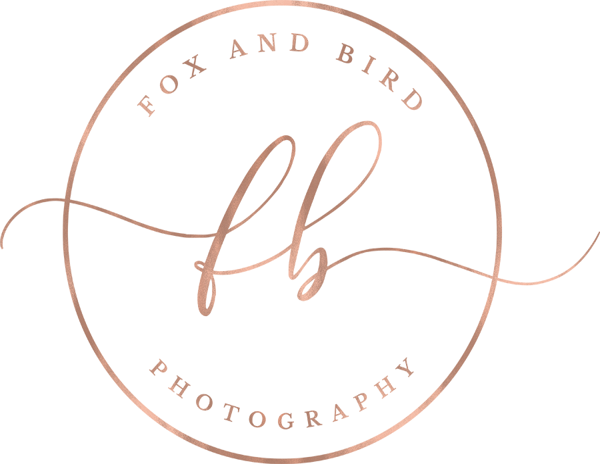 Fox and Bird Photography